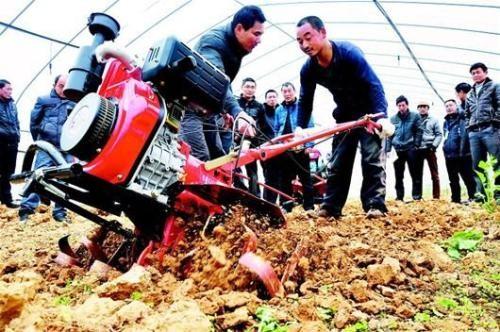 山東省關于成立抗疫情保春耕農機技術指導小組的通知