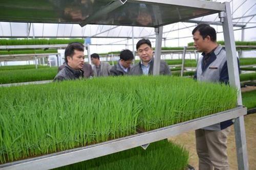 湖南今年力爭早稻集中育秧面積1000萬畝以上