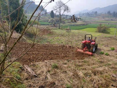 安徽:防疫情 备春耕 农业机械大显身手