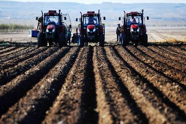 黑龍江省農業農村廳建立備春耕生產聯系制度 指導各地備春耕工作有序開展