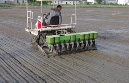 广东省关于确定2020年水稻机械精量穴直播技术及农用无人飞机水稻直播技术示范点承担主体的公示