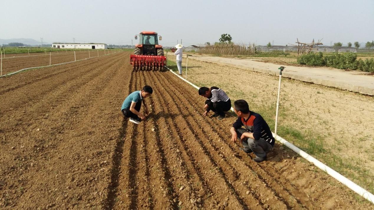 安徽省2020年种植业工作要点