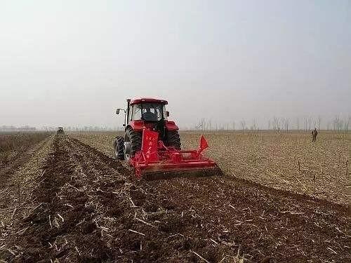 安徽省2020年確保糧食面積超過1億畝、總產量3900萬噸以上