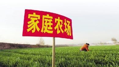 新疆农资保供农民合作社、家庭农场资质证明