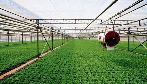 農、財兩部關于開展2020年國家現代農業產業園創建工作的通知