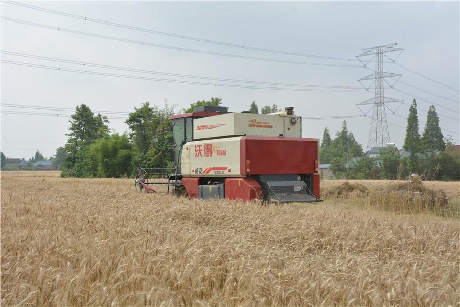 山東省農業農村廳 山東省公安廳 山東省交通運輸廳關于組織農業機械跨區作業的通告