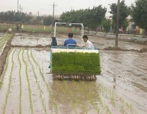 雙季稻區水稻生產全程機械化生產模式
