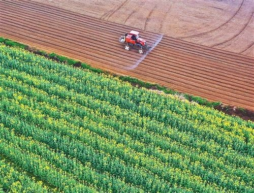 稳住农业,新技术显身手