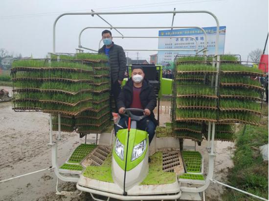 中联重科水稻有序抛秧机 早稻春播新利器