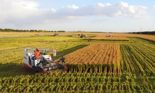 江西省关于2020年农机购置补贴机具种类范围和补贴额一览表公示