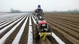 疫情期间春季蔬菜机械化生产指导意见