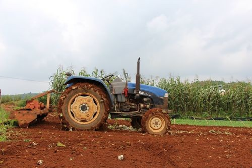 云南省关于农机购置补贴辅助管理系统数据切换工作的通知