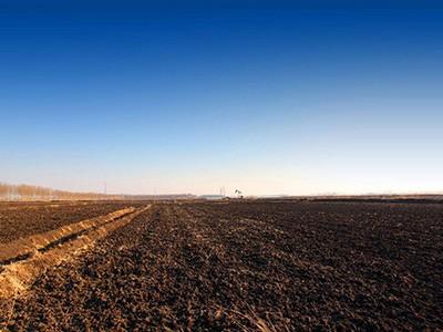 农、财两部关于印发《东北黑土地保护性耕作行动计划(2020—2025年)》的通知