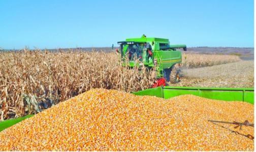 山西省关于公布2019年玉米收获机质量调查结果的通知