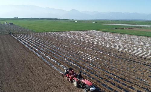 安徽省农业农村厅关于积极应对疫情做好春耕备耕期间农机跨区作业的通知