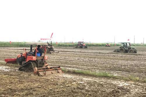 湖北农机部门双向发力战疫情促春耕