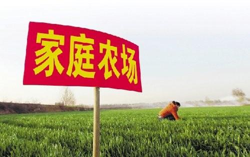 加快培育发展家庭农场