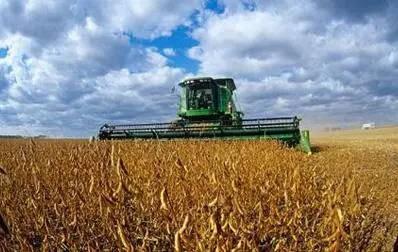 黑龙江2020年大豆补贴高于玉米200元