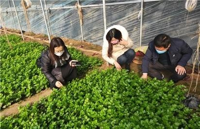 @新型农业经营主体,最新支持措施来了