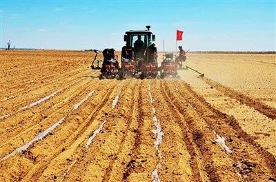 内蒙古农作物播种面积已达126万亩