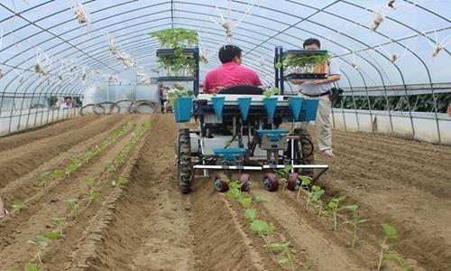 各地农机鉴定推广系统 强化农机化技术指导 开足马力保障菜篮子