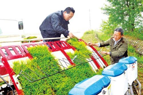 广西关于推介发布2020年广西水稻生产机械化主推技术的通知