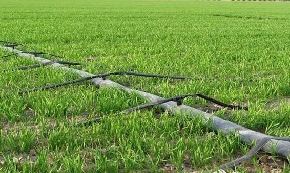 海南省关于确定2019年农机新技术示范推广项目水肥一体化灌溉技术示范基地的公告