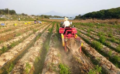 广东省关于启用农业机械试验鉴定信息系统的通知