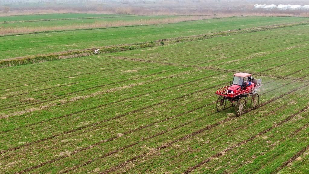 湖北省2020年春季主要作物施肥指导意见