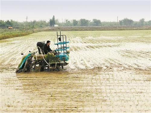 广西关于发布2020年第一批农机试验鉴定产品种类指南的通知