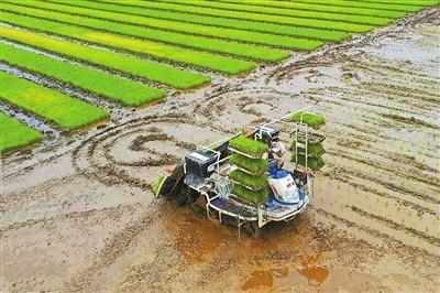 科技助春耕 种地更轻松