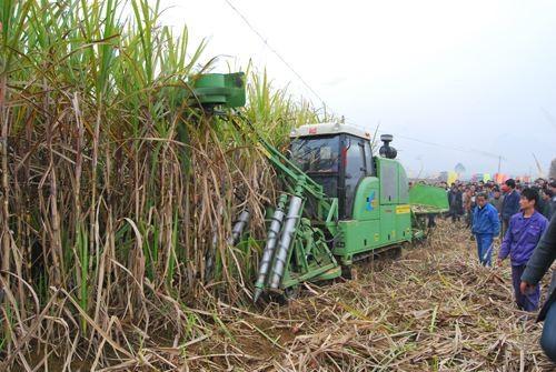 广西下达2020年主要农作物及甘蔗耕种收综合机械化率发展指标