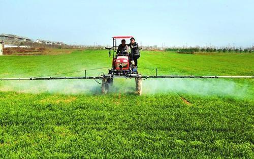山西省2020年冬小麦后期田间管理意见