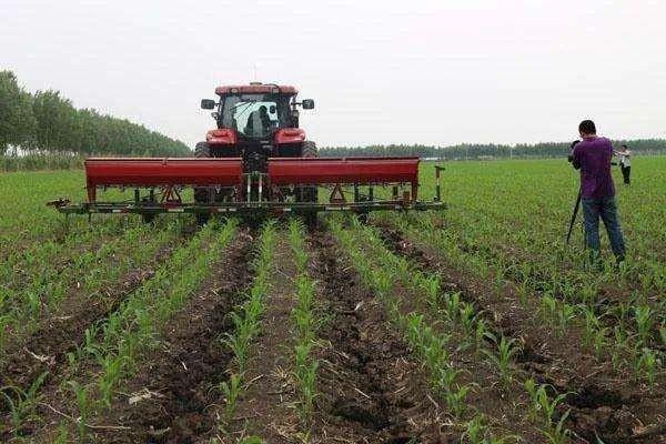 汇总各级:东北黑土地保护性耕作政策