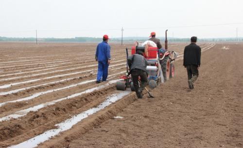 辽宁省今年粮食播种面积超5234万亩