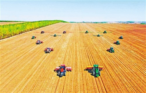 【图文】机械化种植 助增收