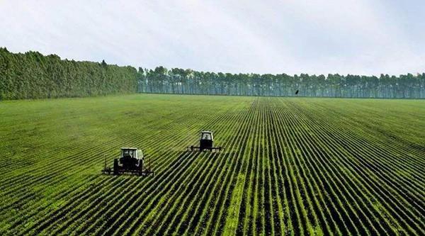 投资不低于1800元/亩!宁波市2020年将确保新增高标准农田11万亩以上