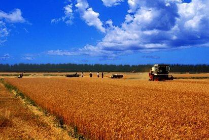 到2025年,河南省将建成8000万亩高标准农田