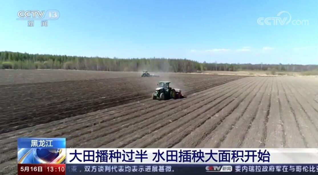 黑龙江:大田播种已过半 水田插秧大面积开始