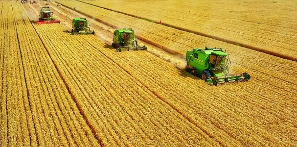 """山西省2020年""""三夏""""将机收小麦750万亩、机复播玉米、豆类470万亩!"""