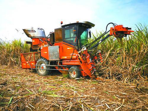 广西加大农机研发、补贴等力度,推动糖业降本增效