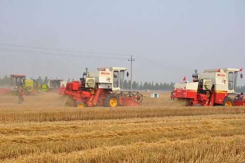 河南省全力备战麦收 把丰收在望变成收成在手
