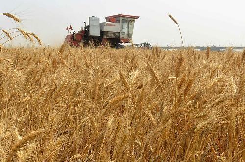 """山西省农业机械发展中心关于做好2020年""""三夏""""农机化生产工作的通知"""