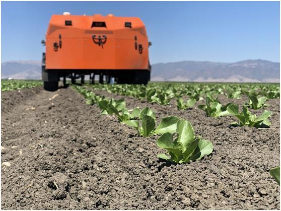 机器人技术是农业的未来吗?