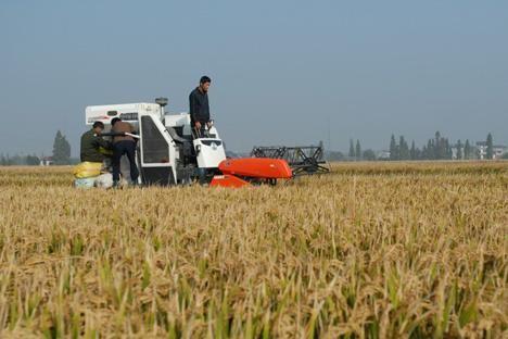 四川省关于2020年第一批农机购置补贴产品投档结果的公告