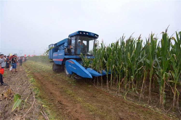 河北省2020年稳定粮食生产工作方案