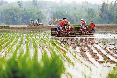 重庆市关于2020年第3批农机推广鉴定结果的通告