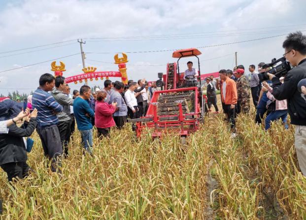 2020年大蒜机械化生产田间演示会在平度举行