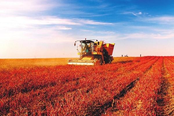 吉林农业机械化水平快速提升