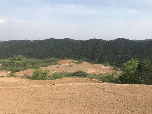 周玲慧代表: 推进丘陵山区农田宜机化改造